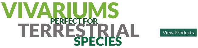 Terrestrial Vivariums